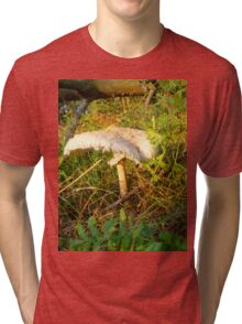 White Toadstool 2 Tri-blend T-Shirt