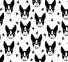Boston Terrier - White by Andrea Lauren