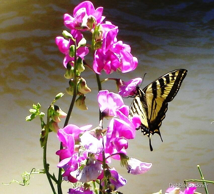 Beautiful Butterfly by Debbie Buckner