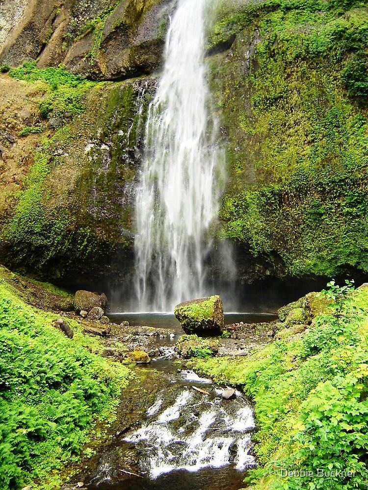 OR Waterfall 2 by Debbie Buckner