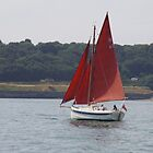 Sailing In The Fal Estuary by lezvee