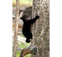 Tree Hugger Photographic Print