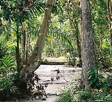 River Jamaica by sillumgungfu