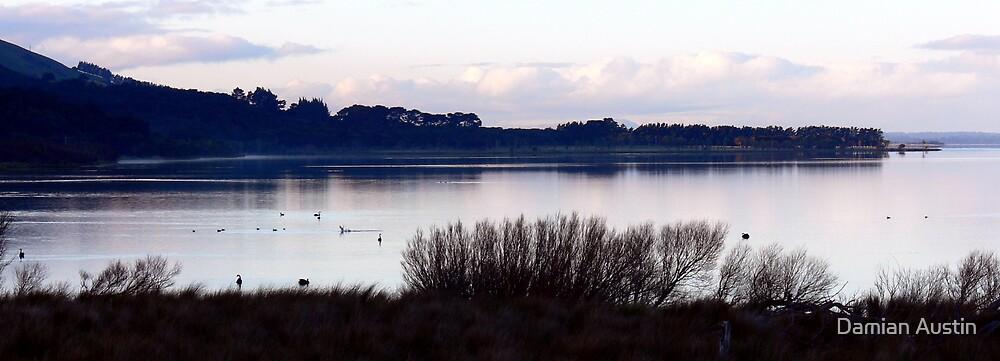 Lake Wairarapa by Damian Austin