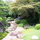 Garden view by Susan Moss