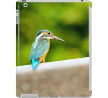 eisvogel kingfisher Alcedo atthis iPad Case/Skin