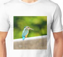 eisvogel kingfisher Alcedo atthis Unisex T-Shirt
