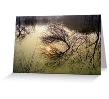 Beauty of Acceptence Greeting Card