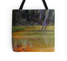 Silica and Clay Tote Bag