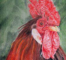 Mr Rooster by Kane  Hardie
