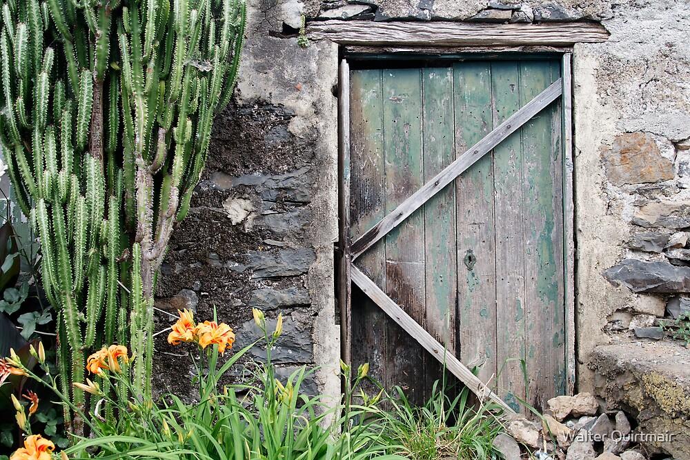 Ye Old Door by Walter Quirtmair