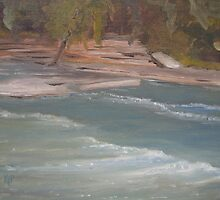 Above Middle Falls by karen pankow