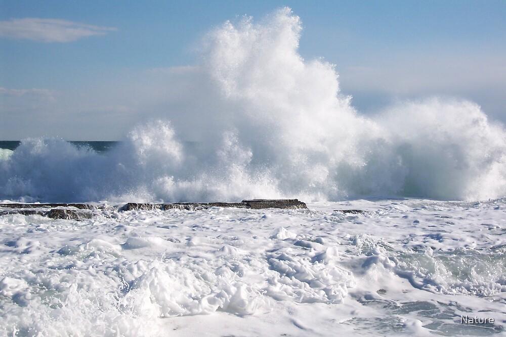Ocean Waters Rule by Nature