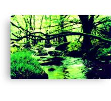 Enchanted Wood Canvas Print