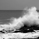 Crashing Wave by Herman Greffrath