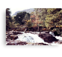 Langstrath Beck Canvas Print