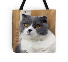 Cute Cat - British Blue By-fold Tote Bag