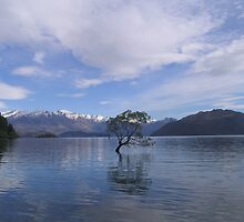 Lake Wanaka, New Zealand by Tanyamcaleer
