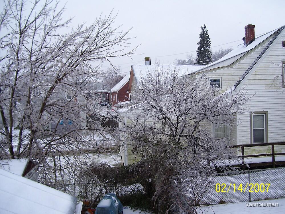 winter wonderland by vasnowman