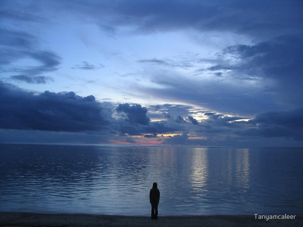 Fiji Dark Sunset by Tanyamcaleer