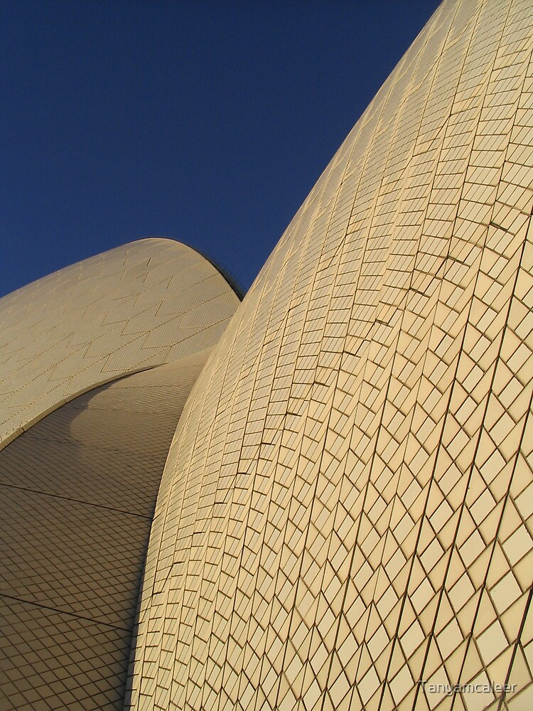 Sydney Royal Opera House Close Up  by Tanyamcaleer