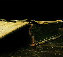 family bible by Aharon Hyman