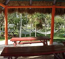 Playground of Hammocks by mistyr