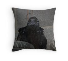 Turkey Vulture  Punk Look Throw Pillow