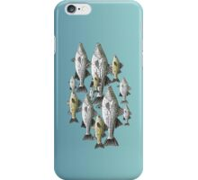 White and Yellow Bass School iPhone Case/Skin