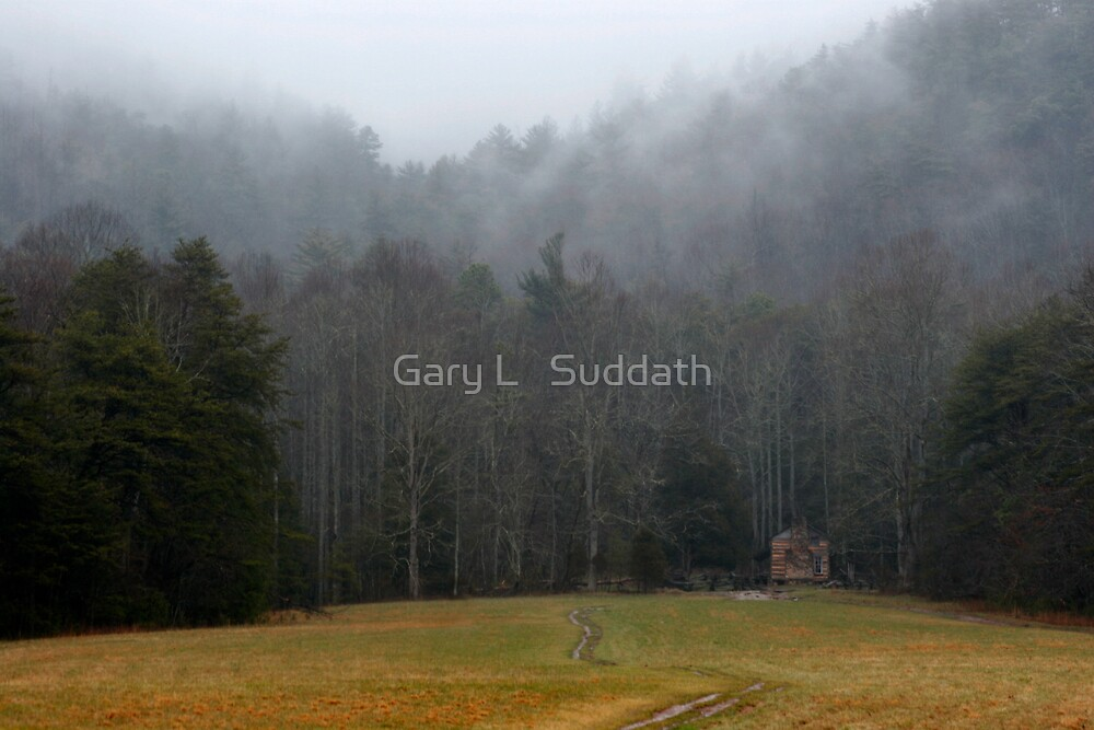 Solitude by Gary L   Suddath