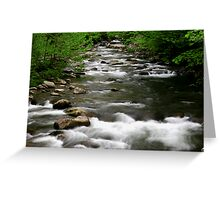 Middle Prong Little River  Greeting Card