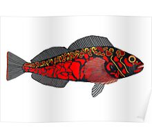 Pebble Greenling Poster