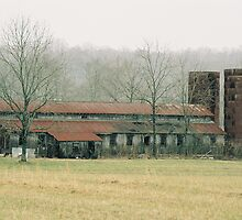 Tennessee Farm by cewoodruff
