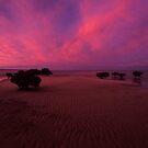 Rippled sand - Westernport bay, Vic. by Tony Middleton