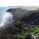 Coastline Australia  by Stephen  Shelley