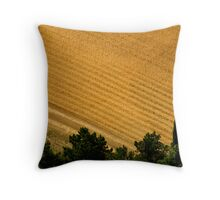 Assisi Countryside  Throw Pillow