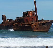 Shipwrecked on Stockton Beach by Joanna Roser