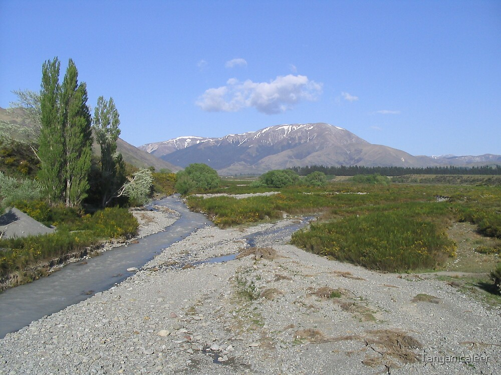 Mountains of New Zealand by Tanyamcaleer