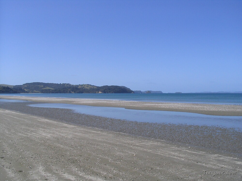 Orewa Beach, Auckland, New Zealand by Tanyamcaleer
