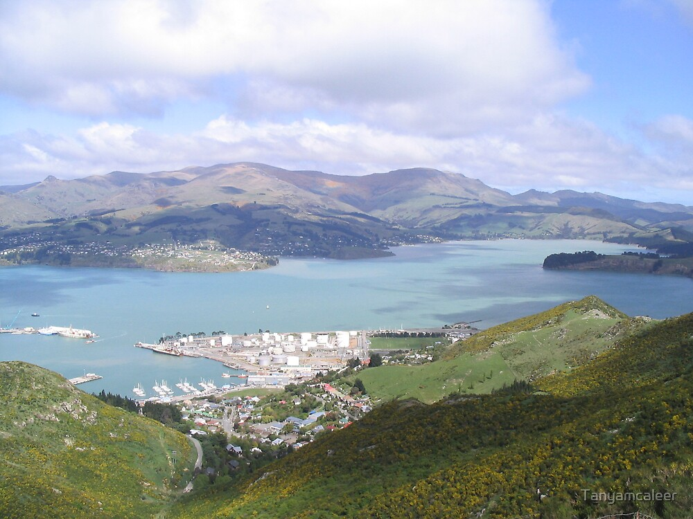 Christchurch View, New Zealand by Tanyamcaleer