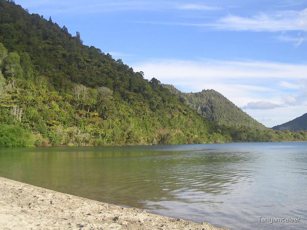 Rotoroa, New Zealand by Tanyamcaleer