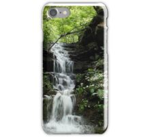 Rocks and Ferns iPhone Case/Skin