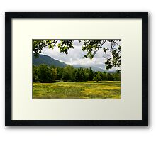 Cades Cove Meadow Framed Print