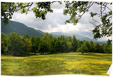 Cades Cove Meadow by Gary L   Suddath