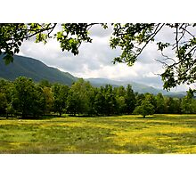 Cades Cove Meadow Photographic Print