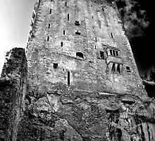 Blarney Castle, Ireland (b/w) by ThomasMaher