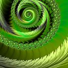 Green Fronds by John Edwards