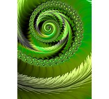 Green Fronds Photographic Print