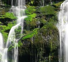 Falling Waters  by Gary L   Suddath