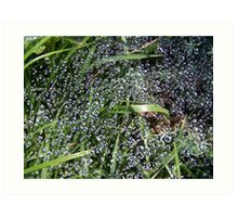 Bubbled web Art Print